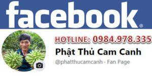 Facebook Quả Phật Thủ